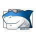 Win8codecs解码器(Shark007)  V9.1.9 英文安装版