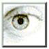 http://img5.xitongzhijia.net/160929/51-160929153522A2.jpg