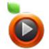 愛土豆(itudou) V3.7.6.6231 最新版