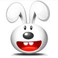超级兔子2013 2.0.0.3 简体中文版