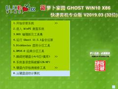 萝卜家园 GHOST WIN10 X86 快速装机专业版 V2019.03(32位)