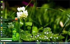 绿色植物xp桌面