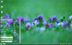 紫花win7系统主题