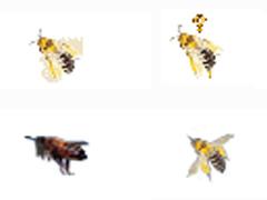 可愛蜜蜂鼠標指針
