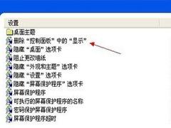 """如何禁止WinXP控制面板中的""""显示""""功能"""