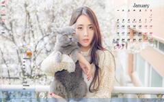 女神与猫咪1月日历Win7主题