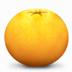 橘子水印添加器 V1.0 绿色版