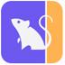 小財鼠 V1.0.2 官方安裝版