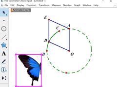 幾何畫板怎么制作蝴蝶動畫?幾何畫板制作蝴蝶動畫的方法