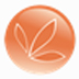 营养配餐系统 V2.0 绿色免费版