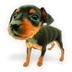 我的ABC软件工具箱 V4.1.0 免费版
