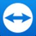 TeamViewer15 V15.17.6 绿色便携版