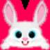 小飞兔下载 V15.0 官方安装版