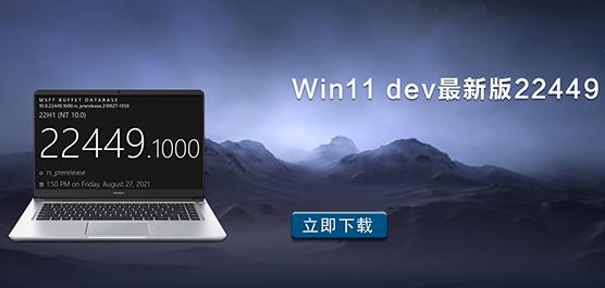 Win11 dev最新版22449下载