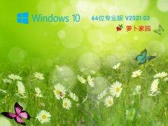 新蘿卜家園Win10 20H2 64位游戲專用版 V2020.03